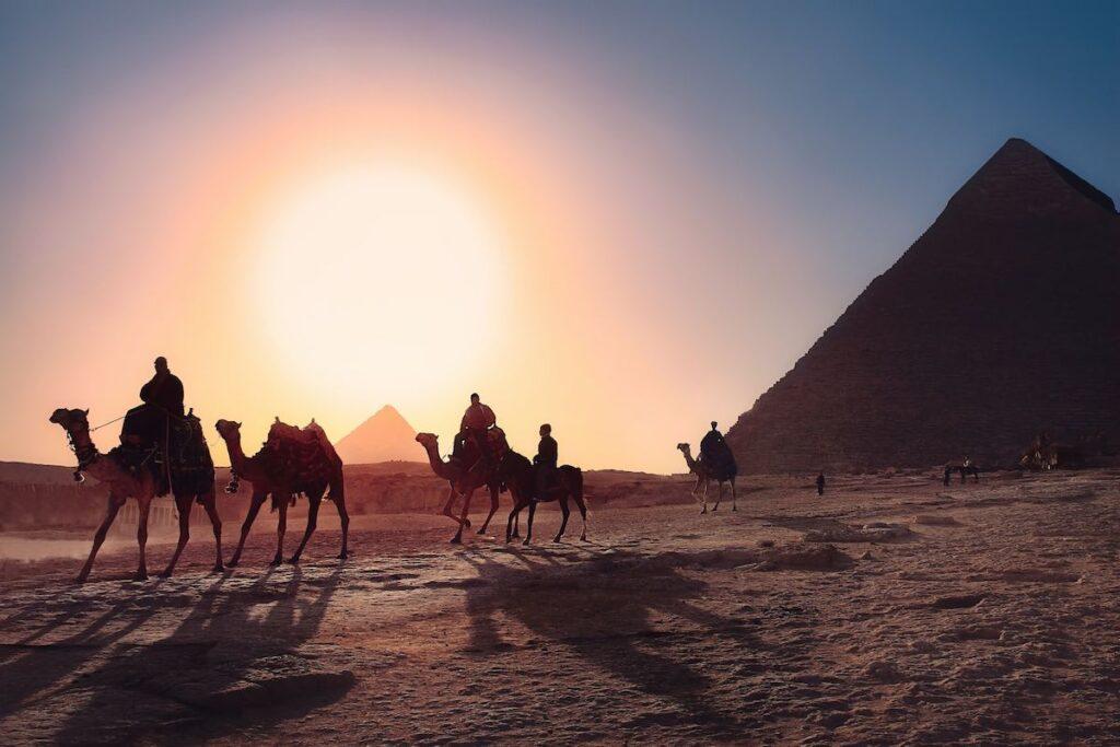 velbloudi v Egyptě